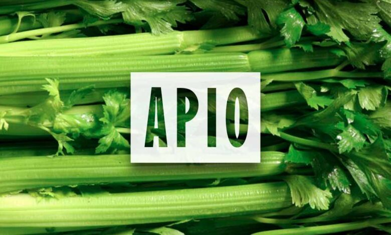 Cultivo de Apio